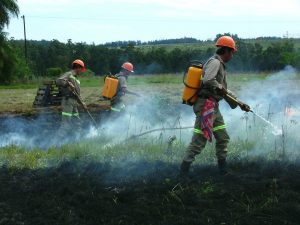 Quemas controladas como herramienta de prevención de incendios forestales