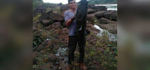 Pescaron un surubí de 40 kilos en Colonia Delicia