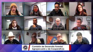Legislatura misionera: tiene dictamen el proyecto de ley para fomentar la producción de jengibre en Misiones