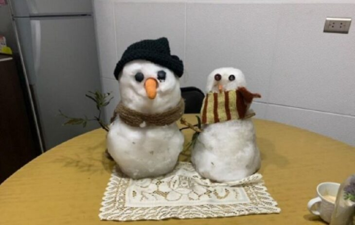 Tito, el muñeco de nieve de 14 años que ahora tiene novia