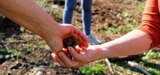 Se realizará la tercera Feria de Semillas Nativas y Criollas en Montecarlo