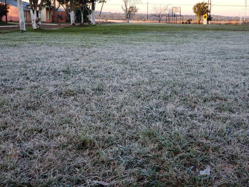 Con la llegada del frío polar, volvieron las heladas a Misiones