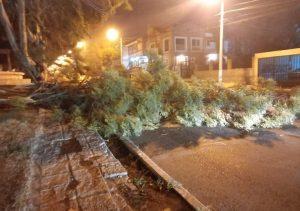 Vientos huracanados azotaron la región patagónica: hubo una muerte en Comodoro Rivadavia