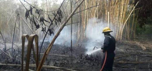 Corrientes: gobierno provincial advierte sobre la vigencia de medidas preventivas para evitar incendios forestales