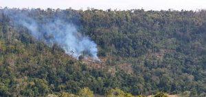 Bosques nativos: registran quemas en Picada Mandarina, en la misma área donde se inició el mayor incendio en la Reserva de Biosfera Yabotí hace 8 meses