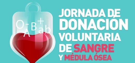 Donación voluntaria de sangre: Montecarlo se prepara para nueva jornada