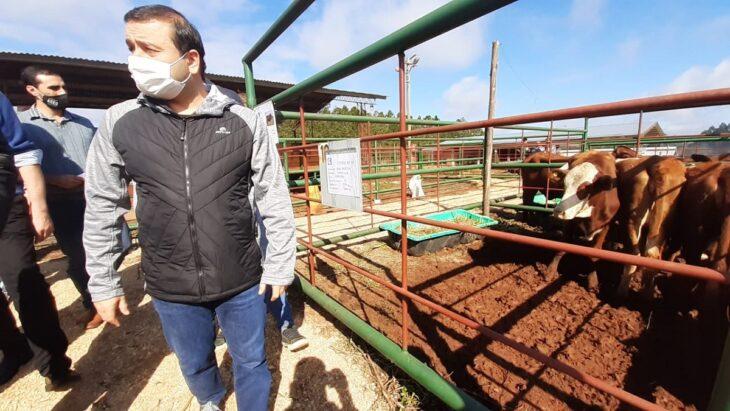 """Herrera Ahuad respaldó la resolución del INYM que regula nuevas plantaciones de yerba mate: """"Acompañamos el cuidado y la protección del pequeño y el mediano productor sin descuidar al grande"""""""