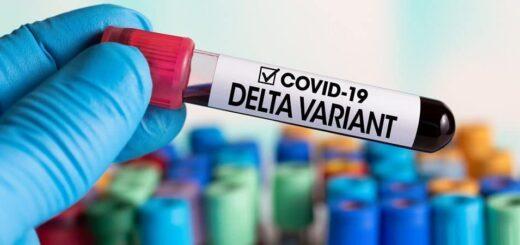 variante delta en Brasil