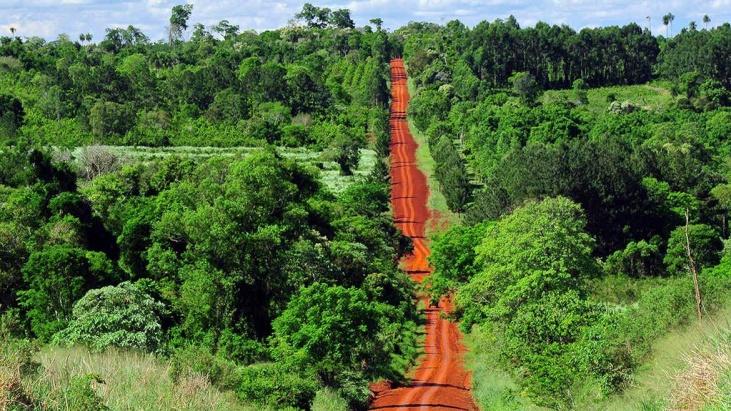 aporte ambiental que hace Misiones