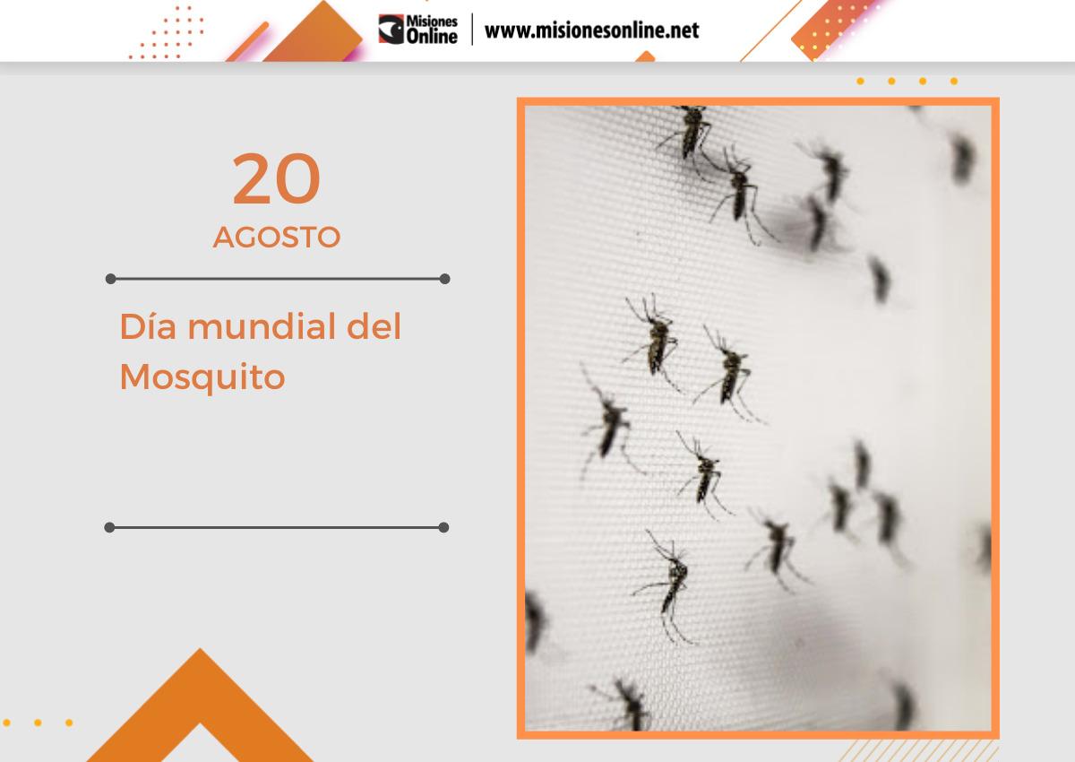 dia mundial del mosquito