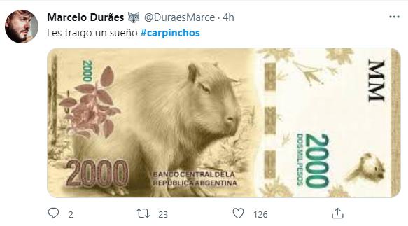 https://static.misionesonline.news/wp-content/uploads/2021/08/carpinchos-memes-1.png