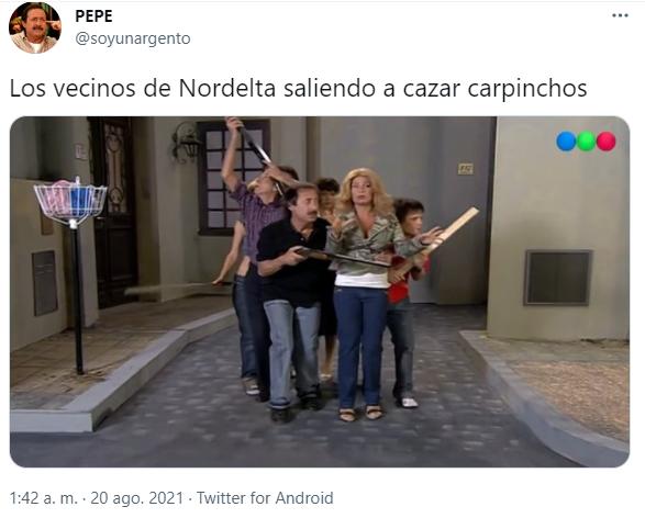 https://static.misionesonline.news/wp-content/uploads/2021/08/carpinchos-memes-2.png