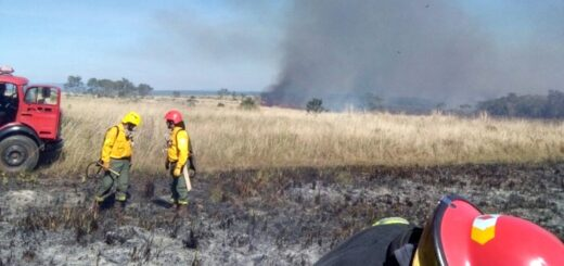incendio en la reserva Campo San Juan