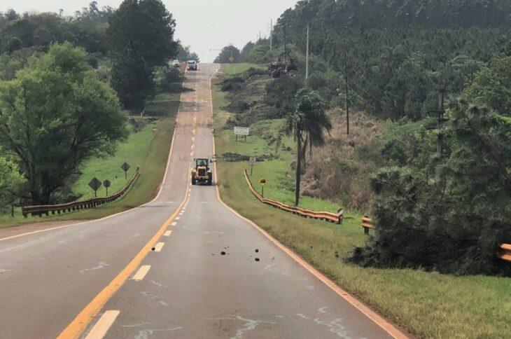 Puerto Rico: ejecutan tareas de despeje de banquinas de la Ruta Nacional N° 12
