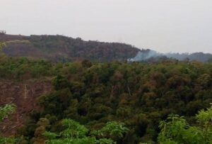 Quemas en Pozo Azul: denuncian que sobre la Ruta 17 siguen usando el fuego en zonas rurales dañando áreas de bosque nativos