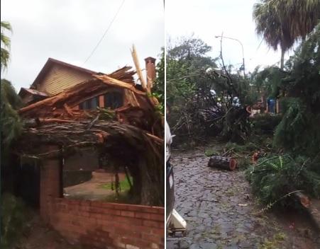 Las zonas Centro y Norte de Misiones fueron las más afectadas por el temporal