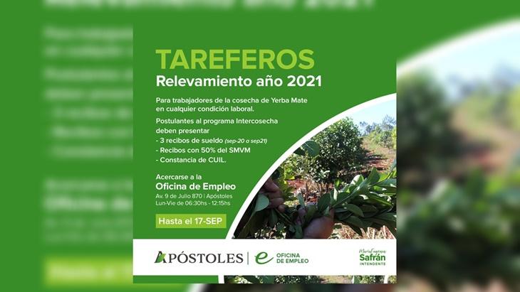Se extiende el plazo del relevamiento de trabajadores de la cosecha de yerba mate en Apóstoles