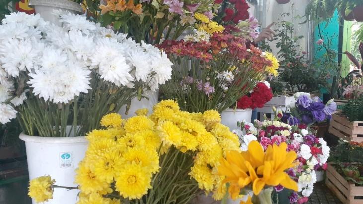 Por el Día de la Primavera aumentó la venta de ramos de flores en Posadas: precios y variedades