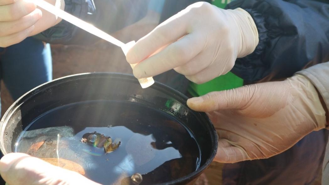 vaciar recipientes con agua