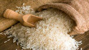 arroz orgánico en Misiones