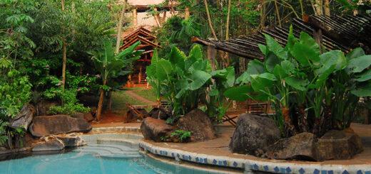 Yacutinga Lodge te espera en plena Selva Misionera: pensión completa, 50% de reintegro con PreViaje y 3 cuotas sin interés