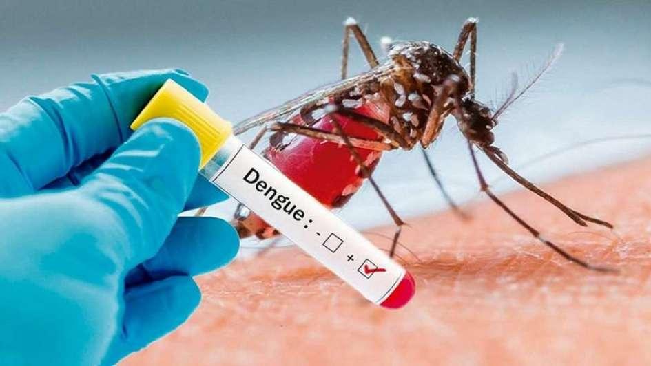 IAMIP previene: concientización sobre el dengue, sus síntomas, serotipos y complicaciones