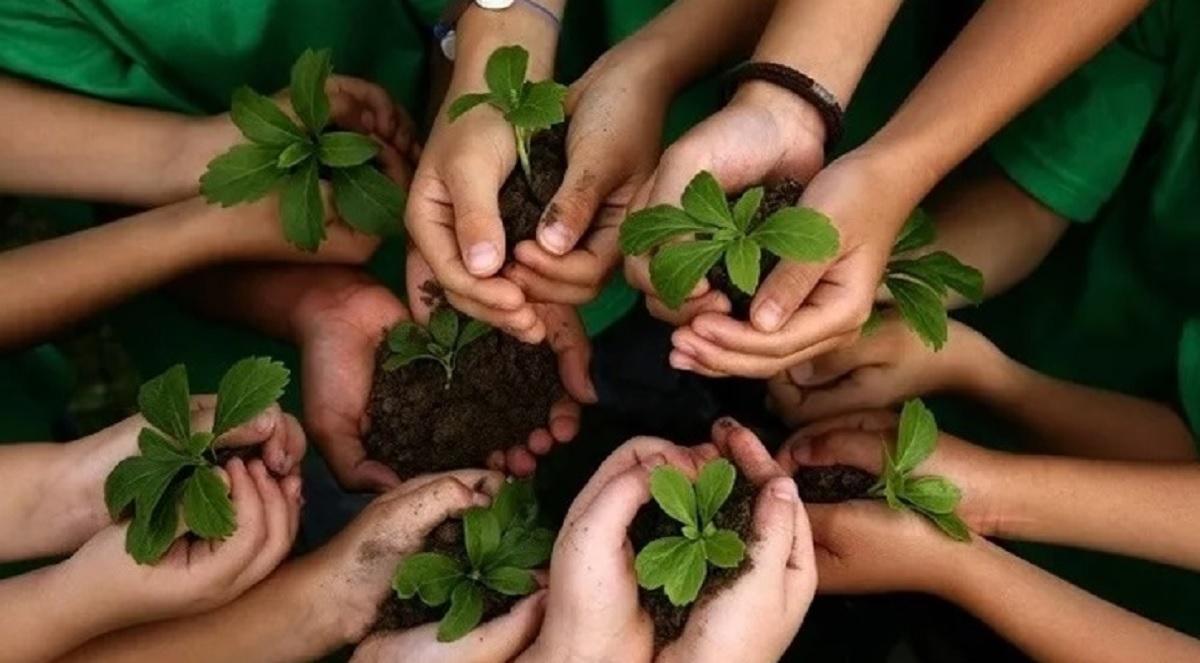 Ley de Educación Ambiental